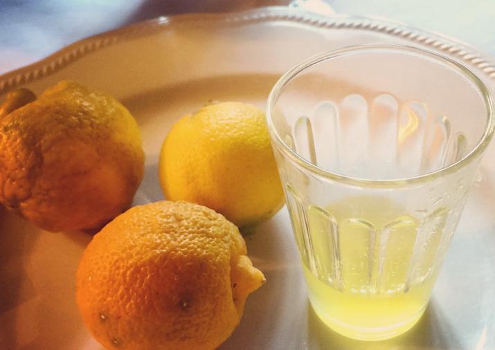 liquore al piretto, tipo e delizioso agrume calabrese, presso il ristorante Kamastra di civita