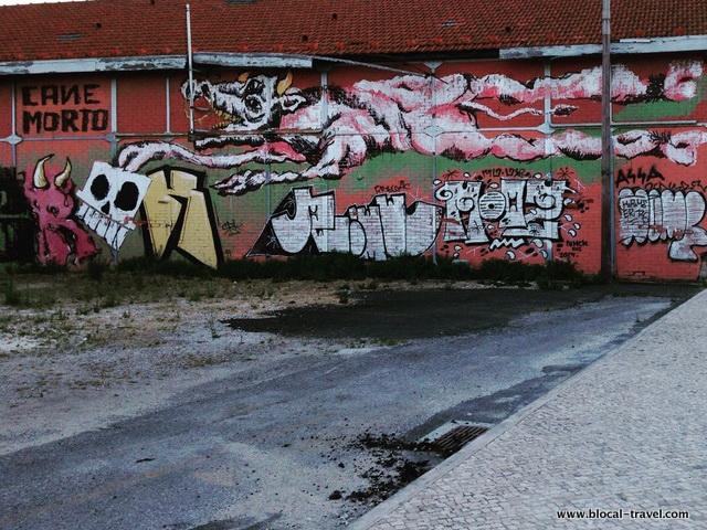 Canemorto (ITA) 1