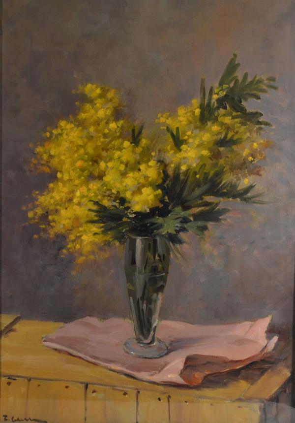 'Mimose' di Franco Colella