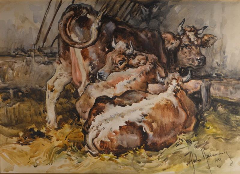 'Mucche' di Aldo Raimondi