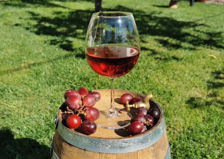 I vini di Puglia, Montepulciano.